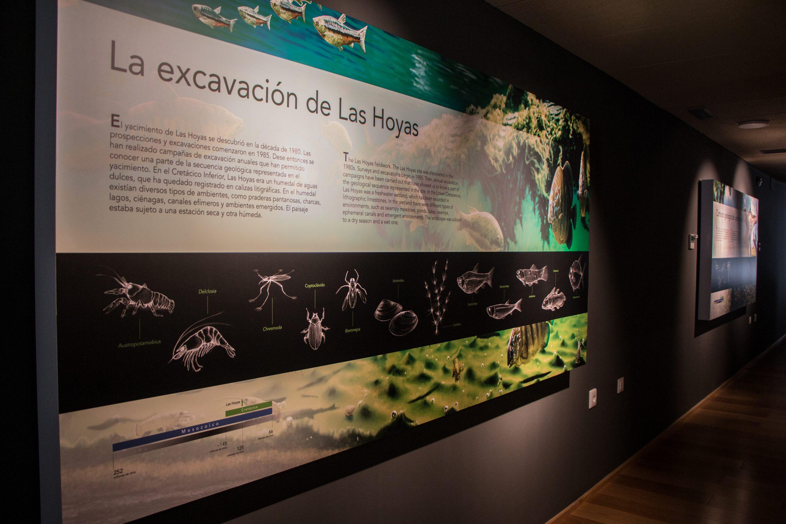 La importancia de Las Hoyas