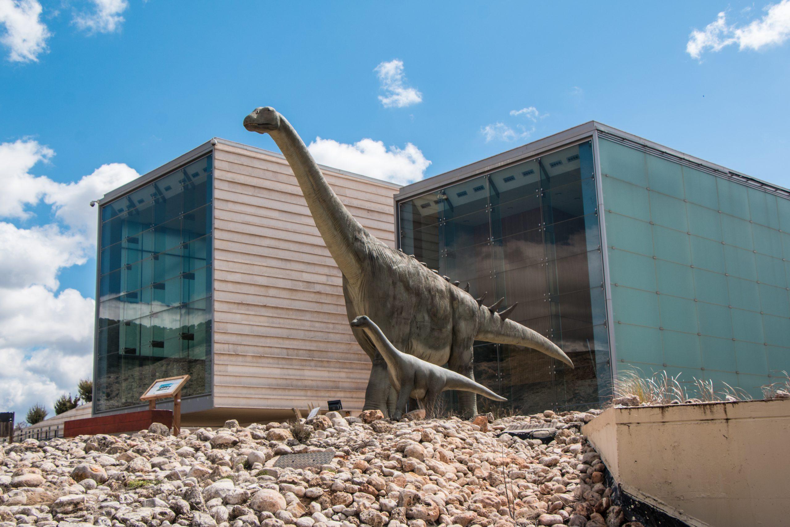 Bienvenidos al Museo de Paleontología de Castilla-La Mancha