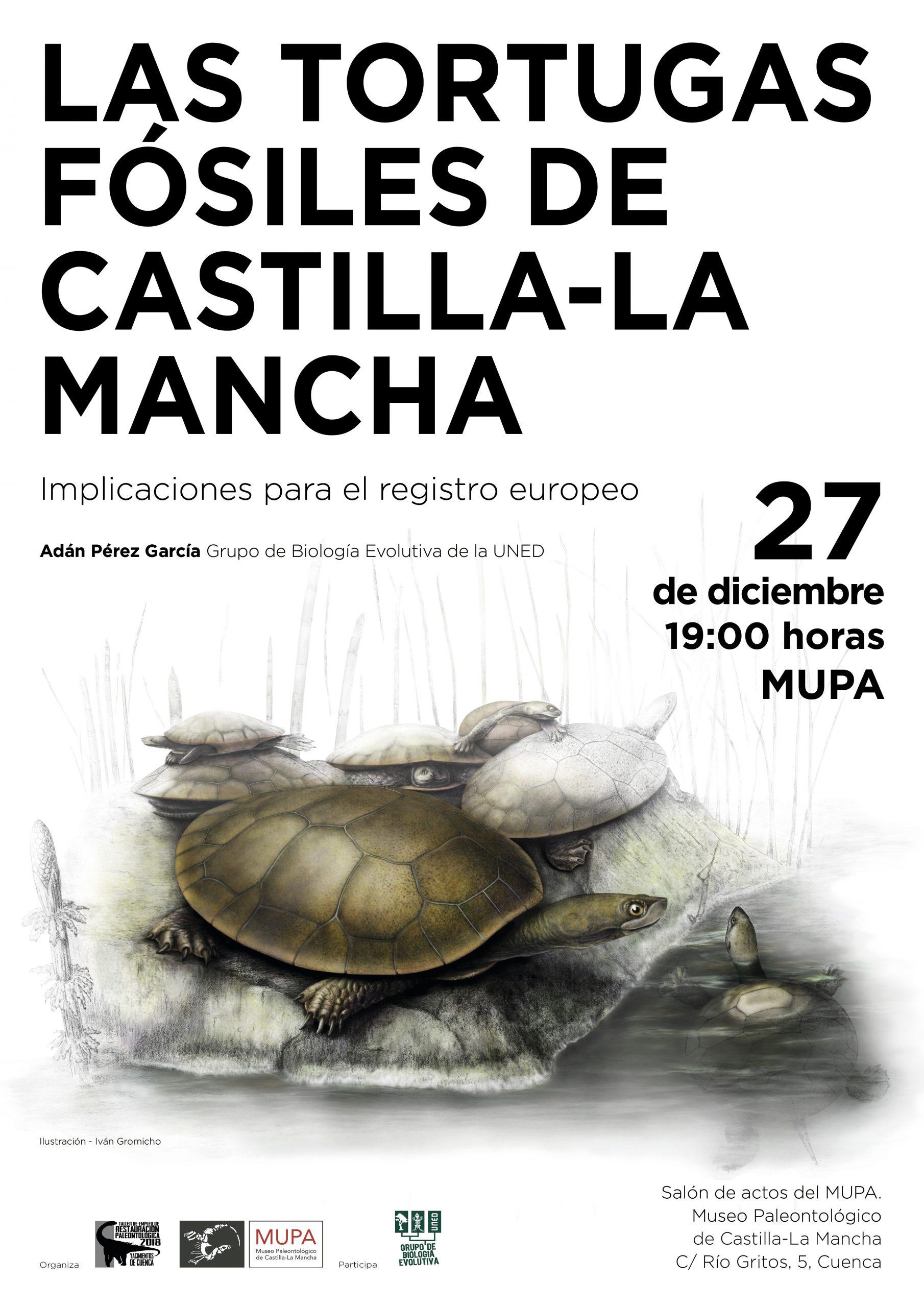Conferencia: Las Tortugas Fósiles de Castilla-La Mancha