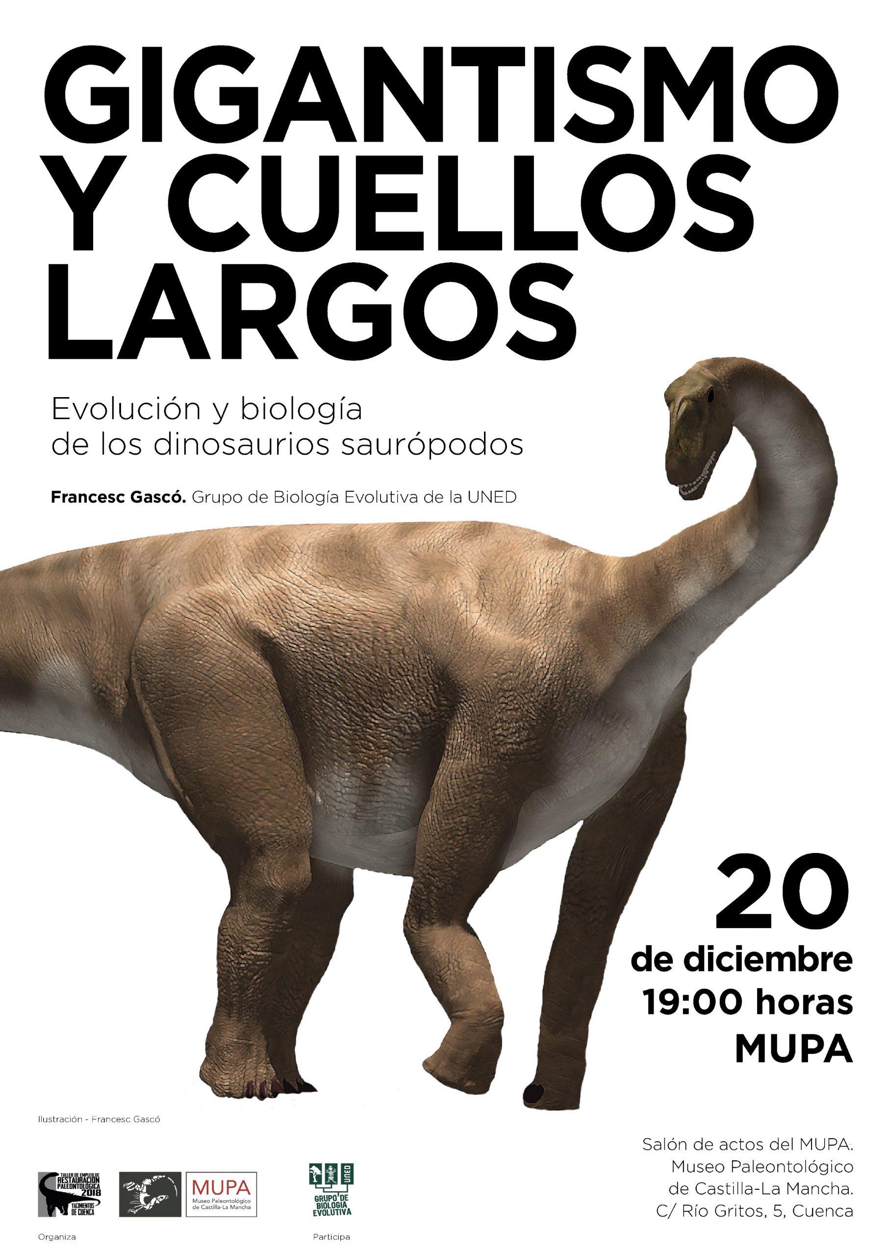 Conoce mejor a los dinosaurios gigantes de cuello largo, los saurópodos