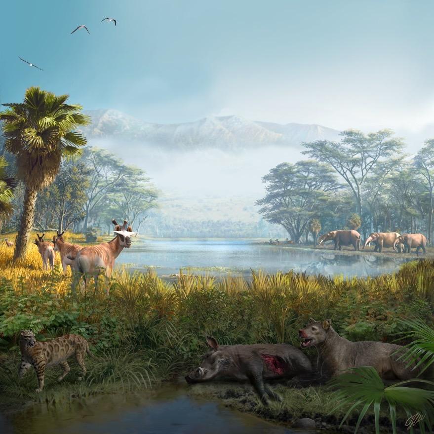 El funcionamiento ecológico de las comunidades de mamíferos se mantiene estable durante millones de años, aunque cambien sus especies